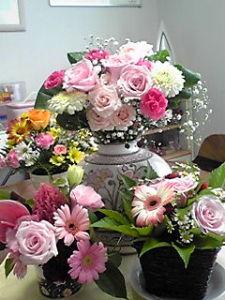 可愛いお花達